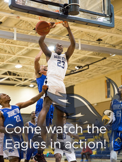 Men's Basketball - Come watch the Eagles in action!