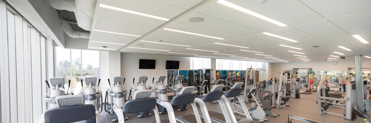 The cardio section is equipped with state of the art machines including Rowers, Treadmills, AMT's, Upright/Recumbent Bike, and an Arm Ergometer.