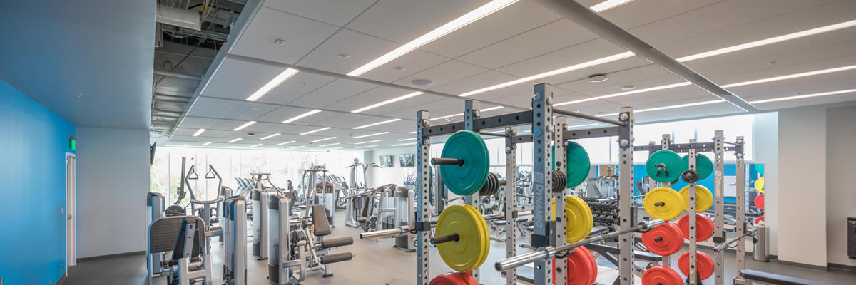 The weight lifting section includes 4 power racks suitable for Power and Olympic lifting.