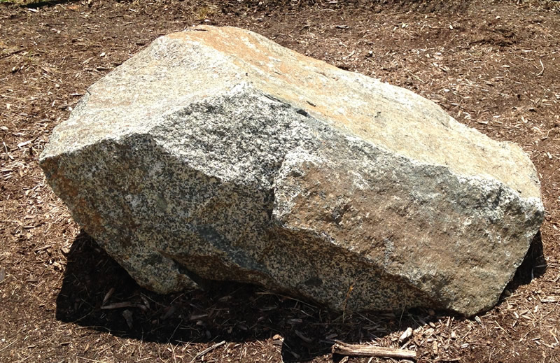 Figure 2: The diorite boulder at Southern Wake (Main) Campus.
