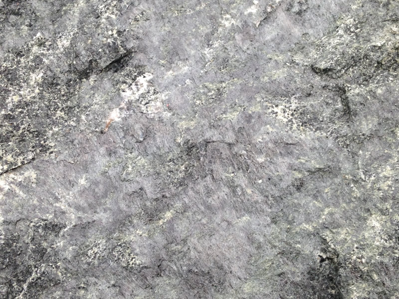 Figure 5: A close-up of the surface of the greenstone, showing the green epidote minerals and slickensides.