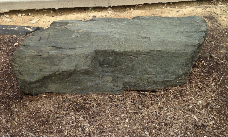 Figure 1: The diabase boulder at Northern Wake Campus.